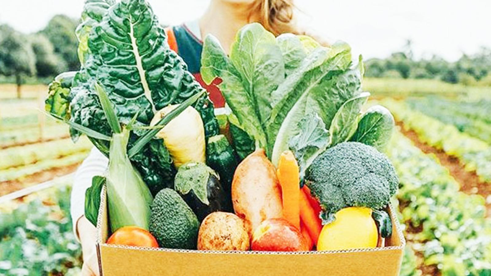 Nuestro socios promocionan la venta online de productos ecológicos